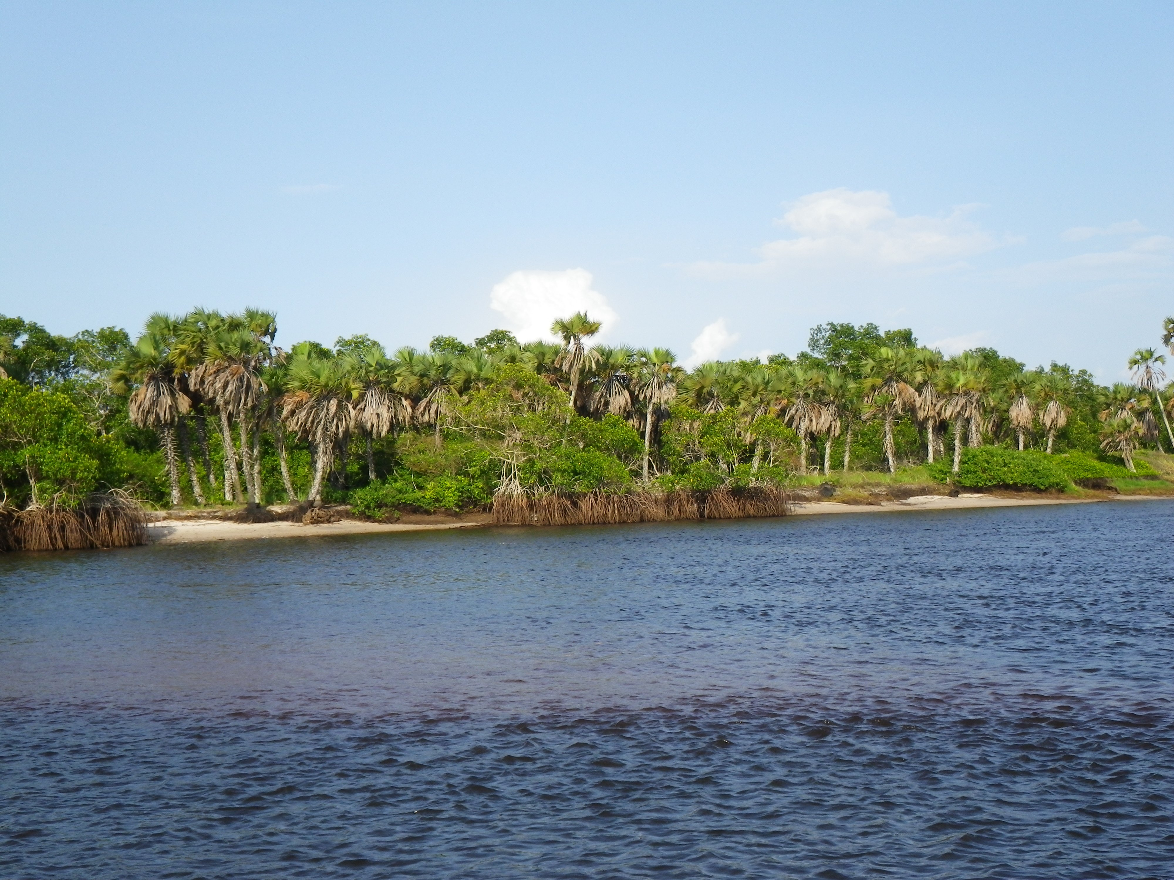 Pointe Noire Congo Paysage Arts Et Voyages